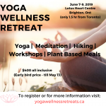 Yoga Wellness Retreat